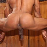 sean-xavier-pene-actor-porno-gay-mastersex5