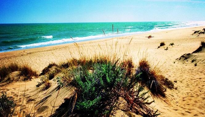 Playa-de-Rompeculos
