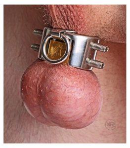 ballstretcher-anillo-de-castidad-acero-inoxidable
