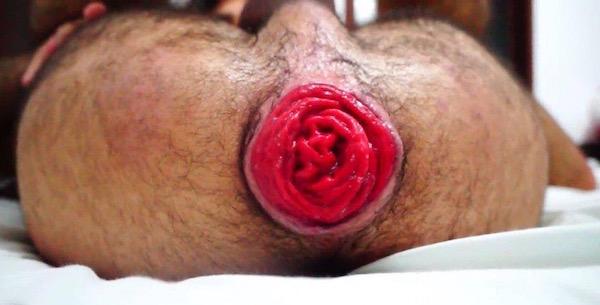 gay-rosebud-porn
